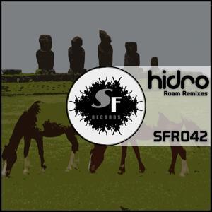 Roam (Remixes)