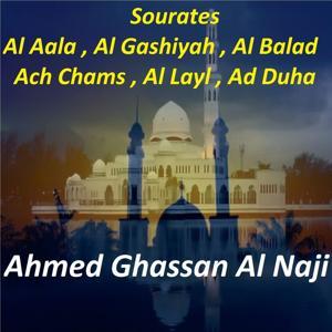 Sourates Al Aala, Al Gashiyah, Al Balad, Ach Chams, Al Layl, Ad Duha (Quran)