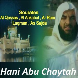 Sourates Al Qassas, Al Ankabut, Ar Rum, Luqman, As Sajda (Quran)