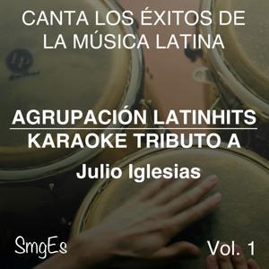 Instrumental Karaoke Series: Julio Iglesias, Vol. 1