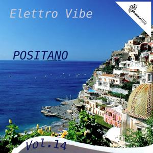 Elettro Vibe Positano, Vol. 14