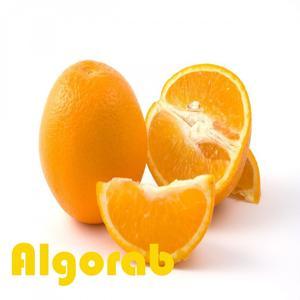 Algorab