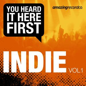 Indie, Vol. 1 (You Heard It Here First)
