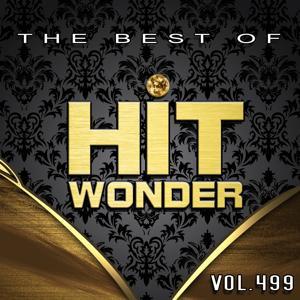 Hit Wonder: The Best of, Vol. 499