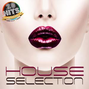 House Selection (20 Hits Compilation 2015)