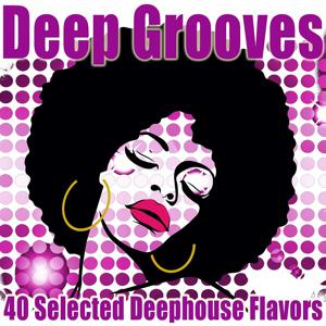 Deep Grooves (40 Selected Deephouse Flavors)