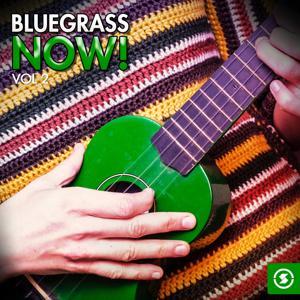 Bluegrass Now!, Vol. 2