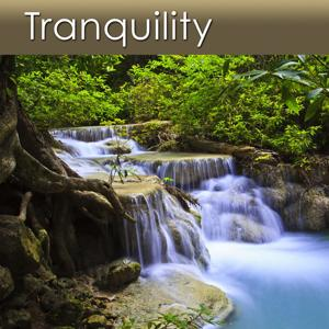 Tranquility (Music for Deep Relaxation and Health)