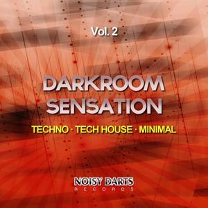 Darkroom Sensation, Vol. 2 (Techno - Tech House - Minimal)