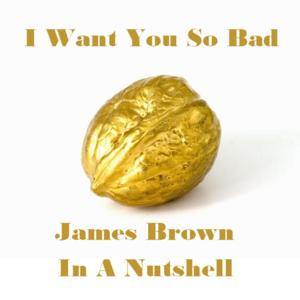 I Want You so Bad - James Brown in a Nutshell