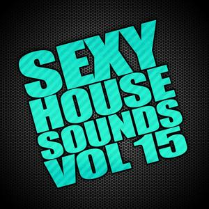Sexy House Sounds, Vol. 15
