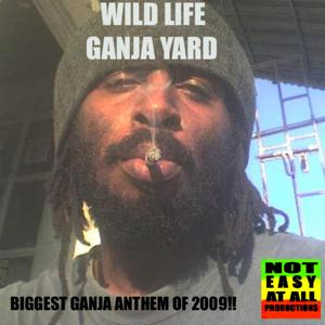 Ganja Yard