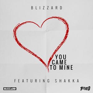 You Came to Mine (feat. Shakka)