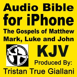 Audio Bible for Iphone