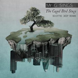The Caged Bird Sings (Scottie Deep's NYC 94