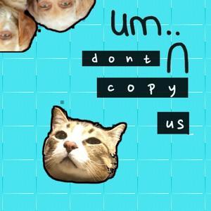 Don't Copy Us