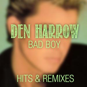 Bad Boy (Hits & Remixes)