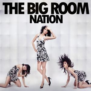 The Big Room Nation