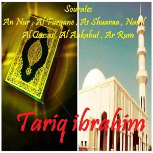 Sourates An Nur , Al Furqane , As Shuaraa , Naml , Al Qassas , Al Ankabut , Ar Rum (Quran)