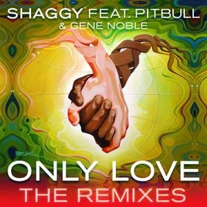 Only Love (The Remixes)