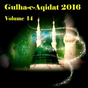 Gulha-e-Aqidat 2016, Vol. 14