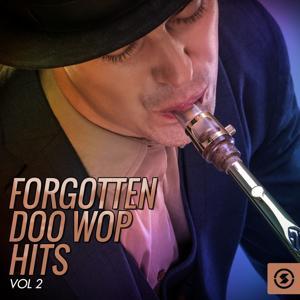 Forgotten Doo Wop Hits, Vol. 2