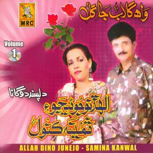 Wah Gulab Ja Gul, Vol. 1