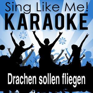 Drachen sollen fliegen (Karaoke Version)