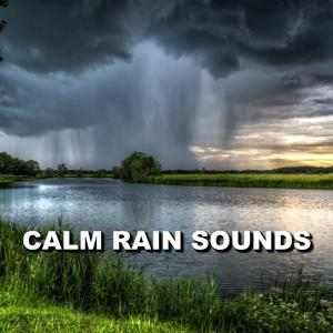 Calm Rain Sounds
