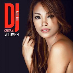DJ Central The Hits, Vol. 4