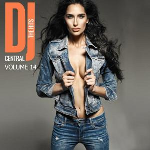 DJ Central - The Hits, Vol. 14
