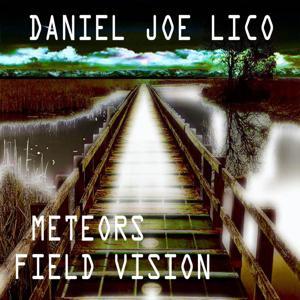 Meteors Field Vision