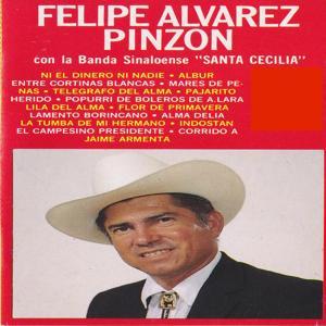 Felipe Alvarez Pinzon Con La Banda Sinalonese Santa Cecilia