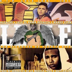 Los Bichotes de Puerto Rico (feat. Lele El Arma Secreta & Nandy Flow)