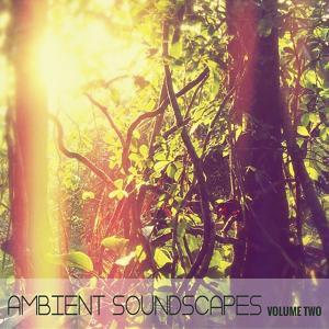 Ambient SoundScapes, Vol. 2