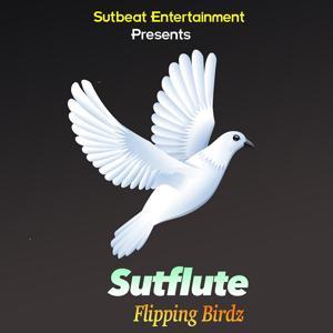 Flipping Birdz