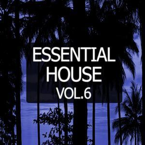 Essential House, Vol. 6