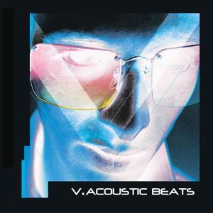 V.Acoustic Beats, Vol. 1
