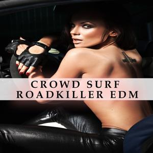 Crowd Surf Roadkiller EDM
