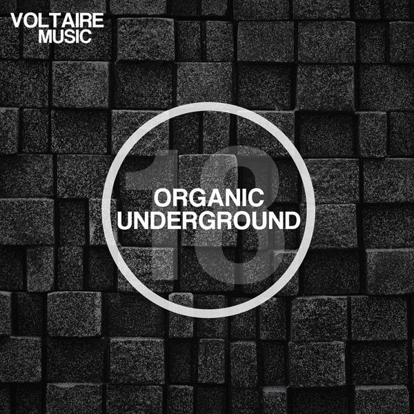 Various Artists - Organic Underground Issue 18