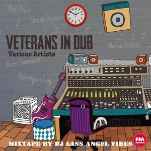 Veterans in Dub Mixtape by DJ Lass Angel Vibes