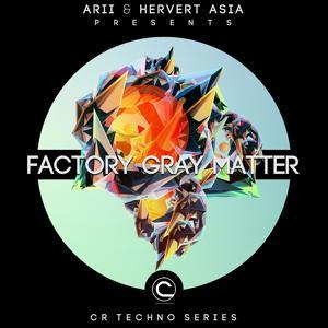Factory Gray Matter