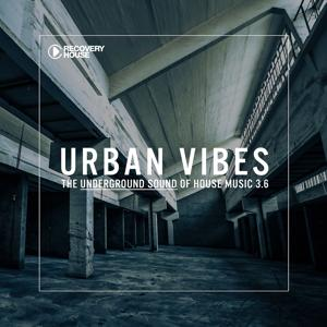 Urban Vibes - The Underground Sound Of House Music 3.7
