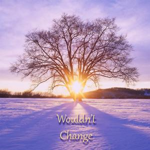 Wouldn't Change