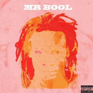 Mr Bool