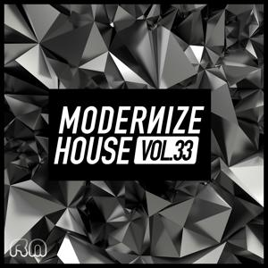 Modernize House, Vol. 33