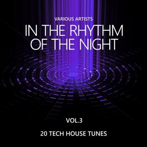 In the Rhythm of the Night (20 Tech House Tunes), Vol. 3