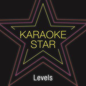 Levels (Karaoke Version)