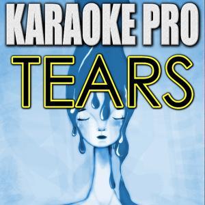 Tears (Originally Performed by Clean Bandit feat. Louisa Johnson) [Instrumental Version]