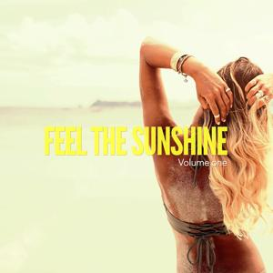 Feel The Sunshine, Vol. 1